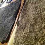 SeanSumagaysay_Godzilla_Texture_06