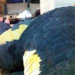 SeanSumagaysay_Godzilla_Texture_13