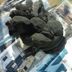 CindySoumeru_Godzilla_24