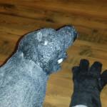 RobertPruitt_GodzillaV2_Hands_03